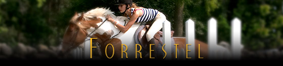 Forrestel - A summer camp for girls and boys